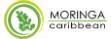 Moringa Caribbean