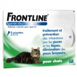 Frontline Spot On Gato 6 Pipetas