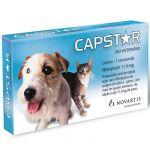 Novartis Antiparasitário Capstar Cão & Gato 11,4mg 1-11Kg 6 Comprimidos