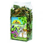 Jr Farm Alimentação Roedores Equinácea & Alfafa 100g