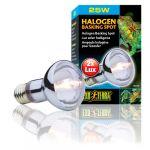 Exo Terra Lâmpada Luz Solar Halogen Basking Spot 100W - PT2183