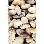 Nayeco Areia sílica Aquário e recintos tartaruga - 8/15mm