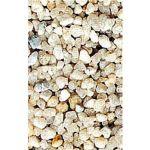 Nayeco Areia sílica Aquário e recintos tartaruga - 2/4mm