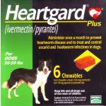 Merial Heartgard 30 plus Antiparasitário Cão 12-22kg 6 Comprimidos