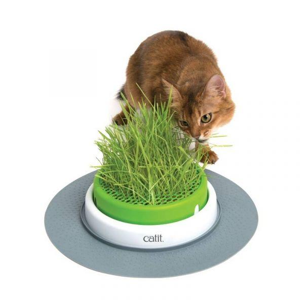 Catit Centro Erva Gateira Senses 2.0 Grass Planter