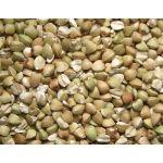 Versele Laga Semente Trigo Sarraceno 20kg