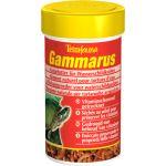 Tetra Alimento Tartaruga Gammarus 1000ml