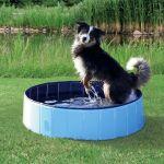 Trixie Brinquedo Cão Piscina 160x30cm - 39483