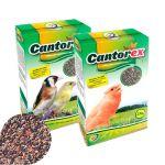 Orniex Cantorex Sementes Saúde/Canto 250g