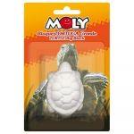 Moly Bloco Cálcio Blister Forma Tartaruga Grande
