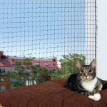 Trixie Rede de Proteção Gatos Preto