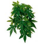 Trixie Planta Terrário Abutilon L