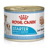 Ração Húmida Royal Canin Starter Mousse Mother & Babydog 12x 195g