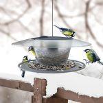 Prosperplast Comedouro para Pássaros