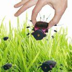 Velleman Kit Insecto Solar - MK185