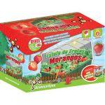 Science4You Estufa de Frutas Morangos
