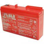Feber Bateria 6V - 7.5AH