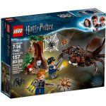 LEGO Harry Potter - Esconderijo de Aragog - 75950