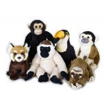National Geographic Peluche Tucano Baby Tropical 17-20 cm 3 Anos - 4058881929015