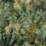 Coordonne Papel de Parede Fotográfico Tnt Selva Espessa Verde