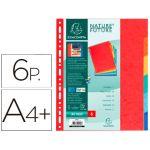 Exacompta 6 un. SeparadoresCartolina A4+ Coloridos - 2406E