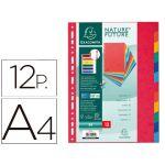 Exacompta 12 un. Separadores Cartolina A4Coloridos - 1412E