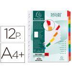 Exacompta 12 un. Separadores Cartolina A4Branco c/ Pestanas Coloridas - 4312E