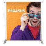 Pegasus - 310.16/UB165-S