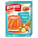 Royal Gelatina Frutos Tropicais 170g