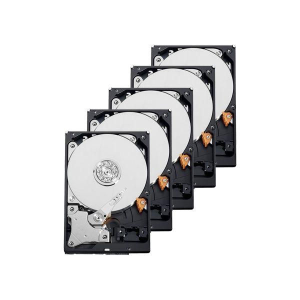 Western Digital Pack 10 Discos 1TB 3.5 Purple 7200rpm SATA III 64MB - 10XHD1TB
