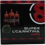 Fharmonat Super L-Carnitina 4000 20 ampolas