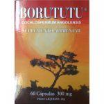 Novo Horizonte Borututu 300mg 60 cápsulas