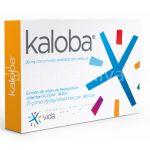 Vida Kaloba 21 Comprimidos