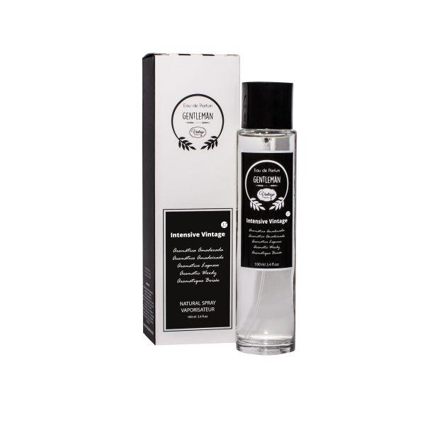 Vintage Perfume Homem Nº 17- Intensive 100ml (Original)