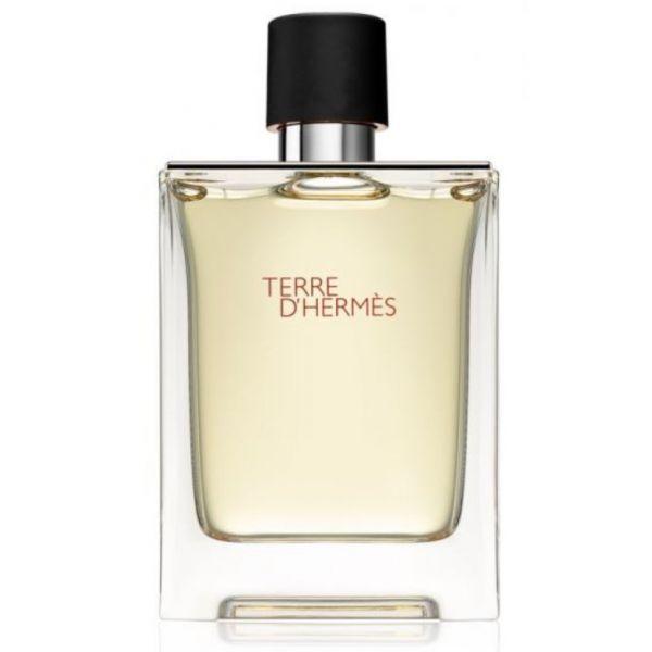 Hermes Terre D'Hermès Man EDT 100ml (Original)